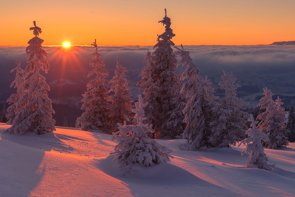 fantastic orange evening landscape glowing by sunlight. dramatic wintry scene with snowy trees. kukul ridge, carpathians, ukraine, europe. merry christmas!