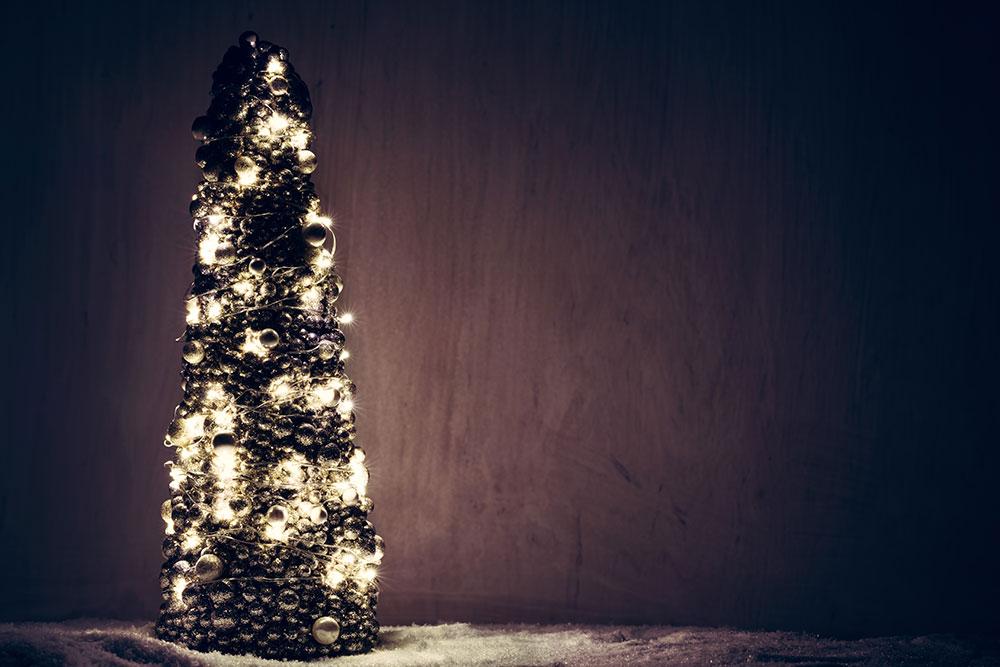 Winter Break: Closed for Regular Lessons December 20 – January 1.